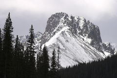 Cameron Pass. Peak near Cameron Pass in northern Colorado Royalty Free Stock Photos