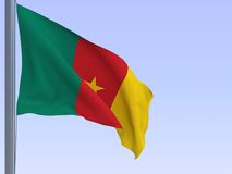 Cameroon flag Royalty Free Stock Image