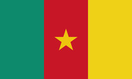 Cameroon flag in official colors and Proportion Correctly. Cameroon flag, Cameroon national flag background texture. Vector illustration Stock Illustration
