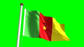 Cameroon flag stock video