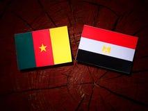 Cameroon flaga z egipcjanin flaga na drzewnym fiszorku odizolowywającym Zdjęcia Stock