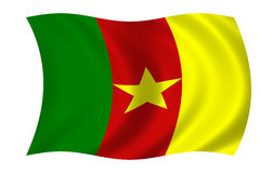 cameroon flagga vektor illustrationer