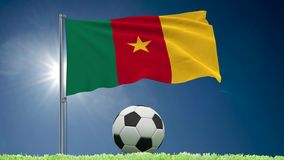 Cameroon futbolu i trzepota? chor?gwiane rolki