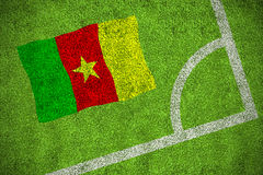 Cameroon national flag Royalty Free Stock Images