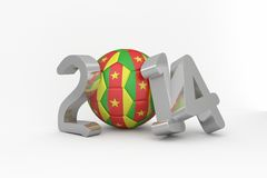 Cameroon world cup 2014 Stock Photography