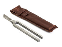Camerton in old leather pouch Royalty Free Stock Photos