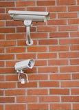Cames da segurança Imagens de Stock