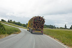 Camión con la madera que conduce en Portugal Imagenes de archivo