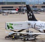 Camión de Gate Gourmet en un Airbus de Star Alliance en el Zuric Foto de archivo libre de regalías