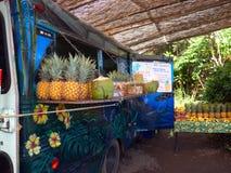 Camión de la comida en Maui Hawaii Foto de archivo libre de regalías