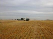 Camión de la cosechadora y del grano Foto de archivo