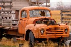 Camión de la granja con un parabrisas quebrado Imagen de archivo libre de regalías