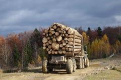 Camión de la madera en las montañas Imagen de archivo