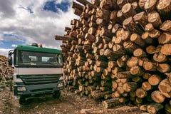 Camión en el almacén de madera para el transporte foto de archivo libre de regalías