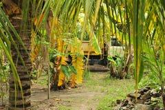 Camión ocultado Imagen de archivo libre de regalías