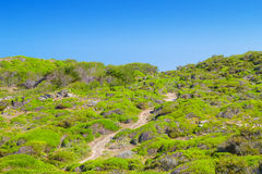 Cami de Cavalls. Walking path going through green hills of Menorca island, Spain. It encircles the whole island and has 186 km or 116 miles royalty free stock photography