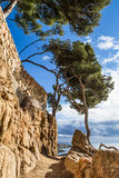 Cami de ronda. Pathway landscape of cami de ronda, calonge, Costa Brava. Spain stock photo