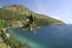 camiguin海岛掌上型计算机菲律宾结构树 免版税库存照片