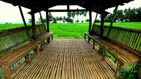 Camiguin paddy-field with great view Stock Photo