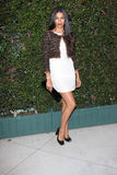 Camila Alves. At a Benefit Dinner For The Natural Resources Defense Council's Ocean Initiative hosted by Chanel, Privaye Location, Malibu, CA. 06-04-11 Stock Photo