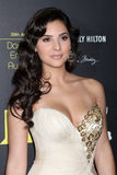 Camila Banus arrives at the 2012 Daytime Emmy Awards Royalty Free Stock Image