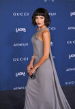 Camilla Belle. LOS ANGELES, CA - NOVEMBER 2, 2013: Camilla Belle at the 2013 LACMA Art+Film Gala at the Los Angeles County Museum of Art Royalty Free Stock Photo