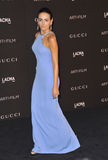 Camilla Belle. LOS ANGELES, CA - NOVEMBER 1, 2014: Camilla Belle at the 2014 LACMA Art+Film Gala at the Los Angeles County Museum of Art Stock Photography