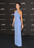 Camilla Belle. LOS ANGELES, CA - NOVEMBER 1, 2014: Camilla Belle at the 2014 LACMA Art+Film Gala at the Los Angeles County Museum of Art Stock Image