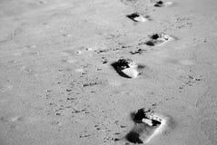 Camina #1 Imagen de archivo libre de regalías