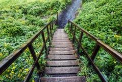 Caminando abajo de la escalera de madera vieja, trayectoria verde en Islandia Foto de archivo