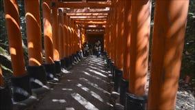 Caminando debajo de las puertas del torii de la capilla famosa de Fushimi Inari en Kyoto, Japón almacen de metraje de vídeo