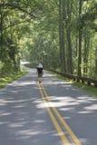 Caminando el largo y la carretera con curvas Imagen de archivo libre de regalías