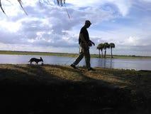 Caminando el perro Imagen de archivo libre de regalías