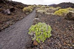 Caminando el sendero en montañas volcánicas rocosas hermosas ajardine, Foto de archivo libre de regalías