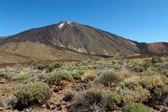 Caminando en el parque nacional de Teide en las islas Canarias de Tenerife, España, Europa Fotos de archivo