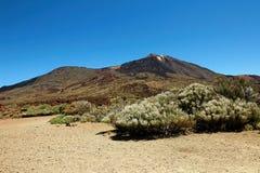 Caminando en el parque nacional de Teide en las islas Canarias de Tenerife, España, Europa Imagen de archivo libre de regalías