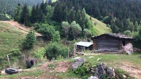 Caminando en Maden Village en las montañas de Artvin, Savsat, Turquía