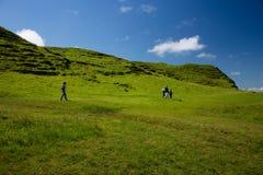 Caminando a la familia en Irlanda, la hierba verde cubrió el campo y las colinas Madre, y sus tres niños Fotos de archivo