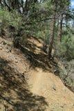 Caminando, rastro biking de la montaña cerca del lago lynx, Prescott, el condado de Yavapai, Arizona Fotografía de archivo libre de regalías