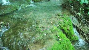 Caminando a través de bosque de la montaña cerca al lago, Visión desde los lagos Plitvice almacen de metraje de vídeo