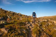 Caminante con la mochila que viaja en las montañas Dovre de Noruega imagen de archivo libre de regalías