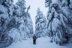 Caminante de Backcountry que empuja a través de la niebla en una cuesta nevosa Esquí que viaja en condiciones del invierno crudo  fotos de archivo