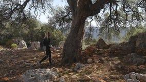 Caminante de la mujer con el árbol viejo grande del abrazo de la mochila en bosque almacen de metraje de vídeo