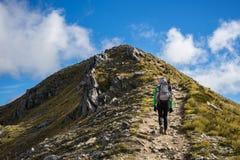 Caminante de la mujer que camina en una sección alpina de la pista de Kepler Foto de archivo libre de regalías