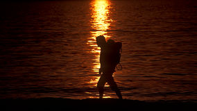 Caminante de la playa Imagenes de archivo