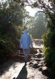 Caminante de la señora en el camino Imagen de archivo