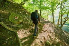 Caminante del adolescente que camina en un rastro de montaña Fotos de archivo