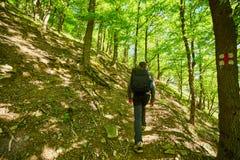 Caminante del adolescente que camina en un rastro de montaña Fotografía de archivo