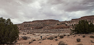 Caminante del desierto imágenes de archivo libres de regalías