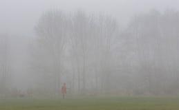 Caminante del perro de la mañana en la niebla imagen de archivo